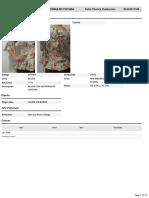 S171261-BLUSA CON ALFORZAS EN CINTURA-Ficha Técnica Producción-es_419.pdf