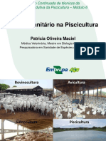 Manejo sanitario-Patricia Maciel
