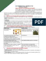 Cuestionario 5 Maderas.docx