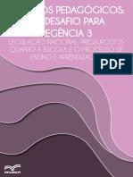 projetos_pedagogicos_-_um_desa (2).pdf