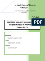 DISEÑO Y MORFOLOGIA DE LA SUB CUENCA NESHUYA_final.docx