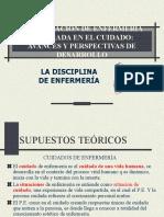 TEMA 8  DISCIPLINA DE ENFERMERÍA