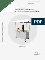 Microemprendimiento-y-subsistencia-2019