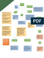actividad 1 Mapa-Conceptual-de-Toxicologia.docx