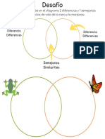 Desafío Comparación Ciclo de Vida Mariposa y Rana