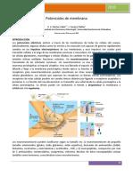 05_Potenciales_de_membrana.pdf