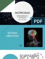 Sistema nervioso y adquisición del movimiento.pdf