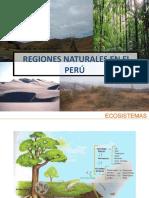 clase 10 regiones naturalesPowerPoint