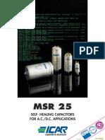 msr_25.pdf