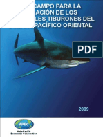 Field Guide to the Principal Sharks of the EPO_Todd L Capson
