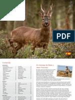 1410993017-2017-Hornady-International-Catalog---Spanish-version.pdf