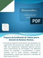 Curso de Liniero.pdf