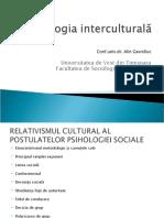 97730467-Alin-Gavreliuc-Relativismul-Cultural-in-Psihologia-Sociala
