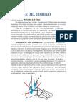 Esguince Del Tobillo. Por El Prof. Dr. Carlos a. n. Firpo