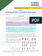 s19recurso4gametogenesisherenciaydiversidad (1).pdf