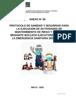 Anexo_N__09__Protocolo_de_Sanidad_y_Seguridad__para_la_ejecución_de_actividades_de_mantenimiento_de_riego_y_drenes_mediante_núcleos_ejecutores_