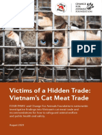 Cat Meat Industry in Vietnam Four Paws Investigation