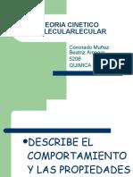 teoria-cinetico-molecularlecular-1221758029526607-8.pdf