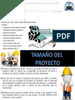 Tamaño del proyecto (1)