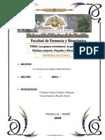 Grupo econom. practica.pdf