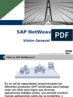 SAP NetWeaver Vision General