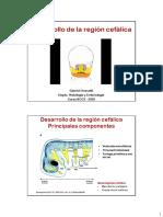 Desarrollo Faringe y Cara.pdf