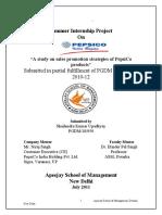 76828035-PepsiCo-Summer-Internship-Project