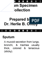 Sputum Specimen Collection