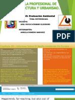 DIAPOSITIVAS DE LA PRIMERA EXPOSICION DEL CAPITULO 19-PRIMER TRABAJO.pdf
