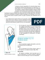 20 Cadenas Musculares 4