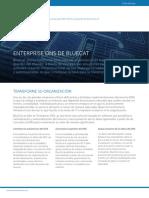 1. BlueCat - Enterprise DNS