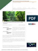 Reportagem_amazonia em 1500