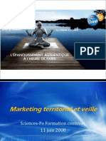 veille-et-marketing-territorial_pdf