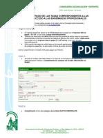 Guia-pago-tasas-2020 (1)