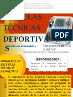 PROGRAMA DE ESCUELAS TÉCNICAS DEPORTIVAS de la d.d.m. 2.ppt