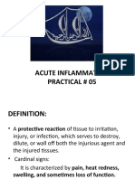Exp.No.5 Acute Inflamation