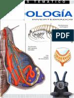 Zoología , invertebrados atlas(Vega A..pdf