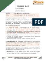 CIRCULAR  No. 45.pdf