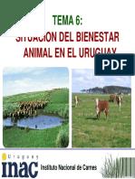 tema_6_-_ba_en_uruguay