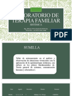 Laboratorio de terapia familiar sistémica