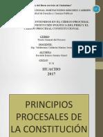 PRINCIPIOS PROCESALES-TGP- RECALDE