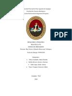 Informe 8 - Indice de Peroxidos.pdf
