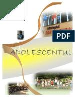Revista Colegiului Ion Kalinderu - Busteni 2011