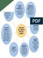PRINCIPIOS DEL DERECHO PROCESAL LABORAL