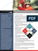 Values_Based_Safety_spanish.pdf