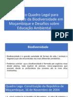 Analise-do-Quadro-Legal-de-Conservacao-em-Mocambique