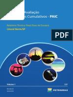petrobas.pdf