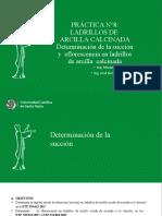 PRACTICA N°8 Determinación de la succion y eflorescencia en ladrillos de arcilla calcinada (1)
