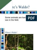 2Wheres_Waldo_Lecture_Slides 12-29-07.pptx