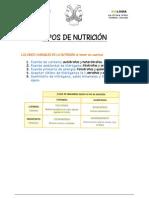 FICHA TIPOS DE NUTRICIÓN